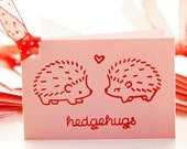 Kids Valentine Cards for the Classroom 25 Mini Notecards with Hedgehogs