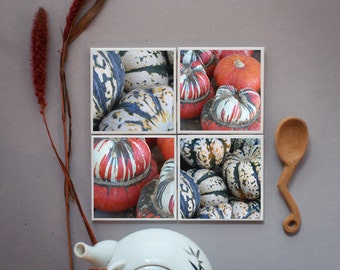 Fall photo coaster set - Pumpkins - set of 4 ceramic coasters, autumn gifts, hostess gift, fine art, green, orange, and white pumpkins