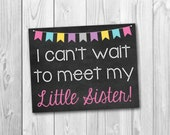 Pregnancy chalkboard sign, big sister sign, little sister, pregnancy announcement, photo prop