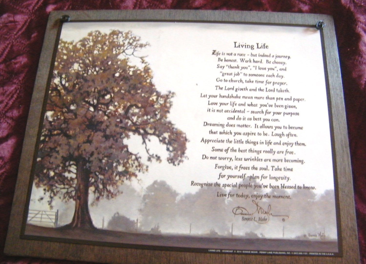 Living Life Tree Inspiration Saying Bonnie Mohr Inspirational