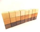 24 Building Blocks - Wood Blocks - Wooden Building Blocks, Set of 24 Domestic Hardwood Building Blocks by Bannor Toys