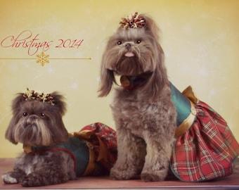 SAMPLE SALE:  CHRISTMAS  Red Taffeta Plaid Special Event Dog Party Dress