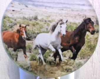 Horse Bathroom Etsy