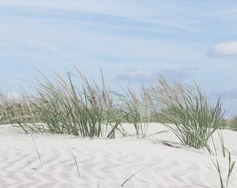 Beach Photography, coastal wall art sand dunes photo with beach grass, aqua blue and jade green beach art