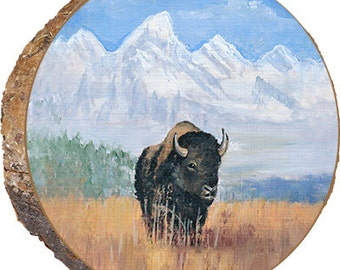 Buffalo in Teton Grass - DAU002