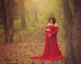 Rachel Maternity Dress /Maternity with SEPARATE/NOT ATTACHED Sleeves/Gloves, Maternity Photography Prop, Maternity Prop