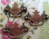 Shabby Chicness 10  Chipendale  Drawer Pulls