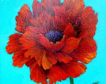 Poppy Red Flower Art Print - Red Poppy on Turquoise - by Lorraine Skala