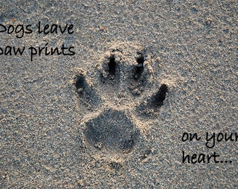 Inspirational quotation, dog paw with quote, dog quote, gift for dog lover, pawprint photo