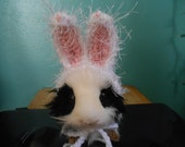 Guinea pig or Ferret Easter Bunny Ears Hat  Guinea pig clothes, Halloween Costume for Guinea pig, Tiny Pet Hat