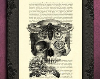 Skull Hawkmoth Art Print death's head moth dictionary art print