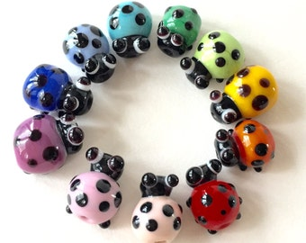 ladies are in the house rainbow o lady bugs