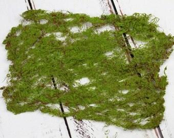 Artificial Moss Sheet for fairy garden, miniature garden, terrarium, or craft project - ONE