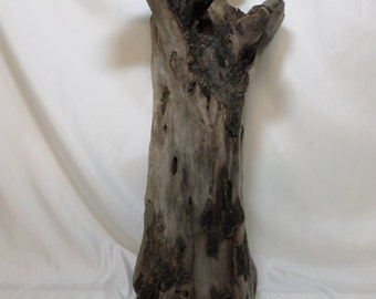 Large Driftwood - Driftwood Sculpture - Driftwood Beach Decor - Fantastic Decorative Possibilities!