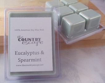 Eucalyptus & Spearmint Scented 100% Soy Wax Clamshell Melt - Stress Relief - Maximum Scented