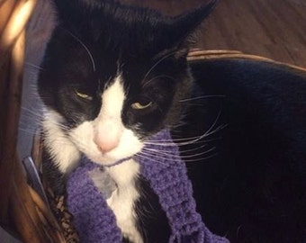 Scarves for kitty - order any color