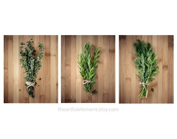 Kitchen decor, Herb prints, Cooking art, Large wall art set, Large Home décor, Set of 3 prints, Modern decor // Culinary Herbs photo set
