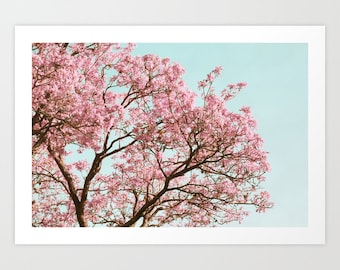 Cherry Blossom Photo, Pink Tree, Spring Photography, Cherry Blossom Tree, Pastel Nature Print, Robins Egg Blue, Tree Photo, Pink and Blue