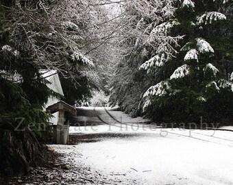 Winter Landscape Photo. Snow Photo Print. Nature Photography Print. Photo Print, Framed Photography, or Canvas Print. Home Decor.