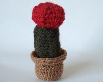Amigurumi: cactus crochet. Un jardin exotique éternel