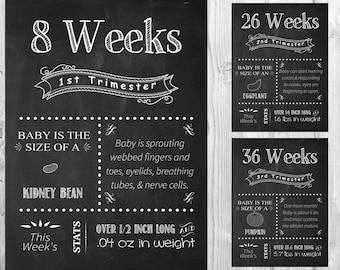 ALL 17 Printable File Pregnancy Chalkboard  Weeks - from 1st, 2nd, 3rd  Trimester chalkboard pregnancy week by week tracker