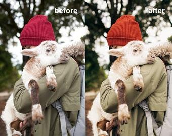 COLLECTION I Lightroom Film Presets / Photoshop Lightroom Preset / Editing Tool Film Emulation Wedding Portrait Photography Preset