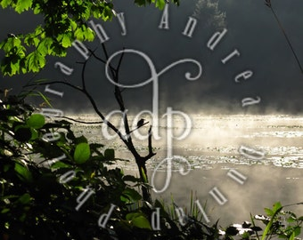 8x10 Lake Connor Photograph