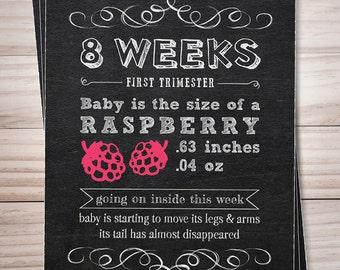 Pregnancy week by week countdown chalkboard // Pregnancy weeks // bi-weekly signs // Baby is the size of // Set of 17 Pregnancy Signs
