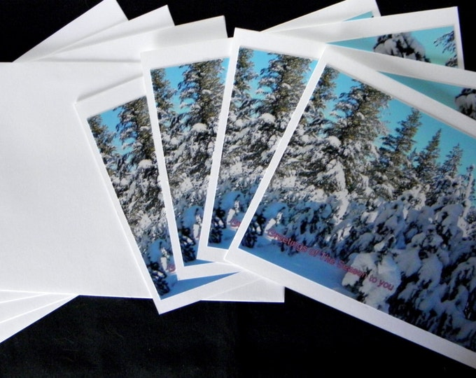 ALL-HOLIDAY Note Cards - a 4-piece set including coordinating envelopes