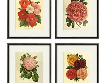 Antique flower art print set antique prints botanical art prints flower wall art Victorian art French prints old prints garden wall art