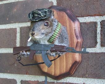 Popular Items For Taxidermy On Etsy