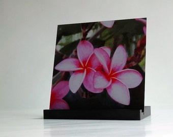 I-Pad Holder and Stand. Plumeria 1