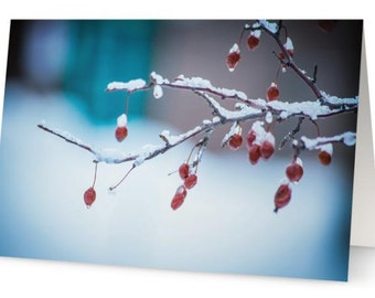 Berries 5x7 Blank Greeting Card, Perfect for the Holidays