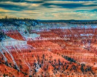 Cedar Breaks National Monument, Utah. #2077