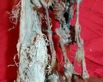 Mummified Marsh Goblin aka : Swamp Hare on custom base