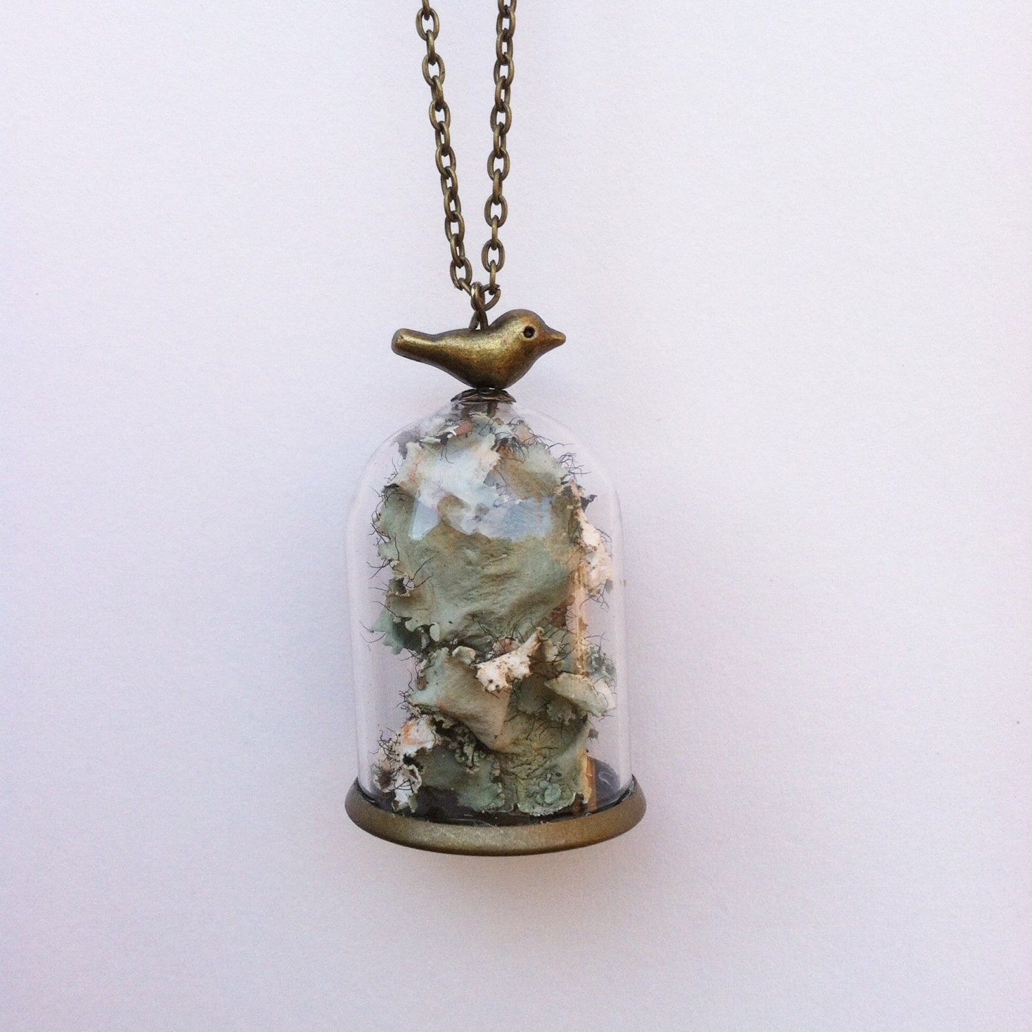 terrarium necklace moss dome necklace living by