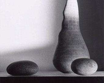 Sue Mason vase and pebbles. Hand made darkroom print. 10x8 inch paper.