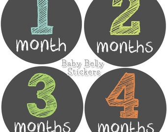 Baby Month Stickers, Monthly Baby Stickers, Bodysuit Stickers, Monthly Milestone Stickers, Baby Monthly Stickers, Baby Belly Stickers, Chalk