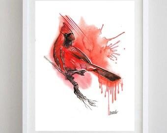 Cardinal Bird  Watercolor Print red cardinal watercolor art from original watercolor painting