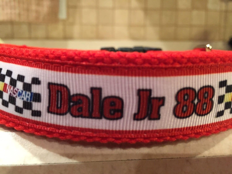 Dale Earnhardt Jr Dog Collar