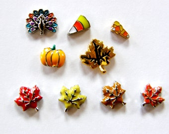Floating Locket Charms- Sale- Fall theme, Maple Leaves, Turkey, Candy Corn, Pumpkin.  Fits Origami Owl, living locket and others.