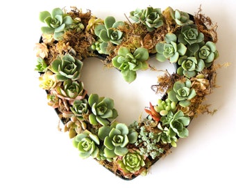 Succulent Heart Centerpiece, Valentines Day Centerpiece