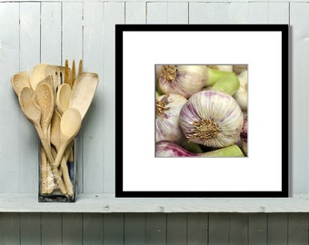 Food Photography, Kitchen Art, Kitchen Decor, Wall Art, Home Decor, French, Garlic, Market, Sage Green, Purple, Matted, Square, 5x5. 8x10