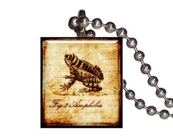 Vintage Frog Toad Amphibian - Reclaimed Scrabble Tile Pendant Necklace