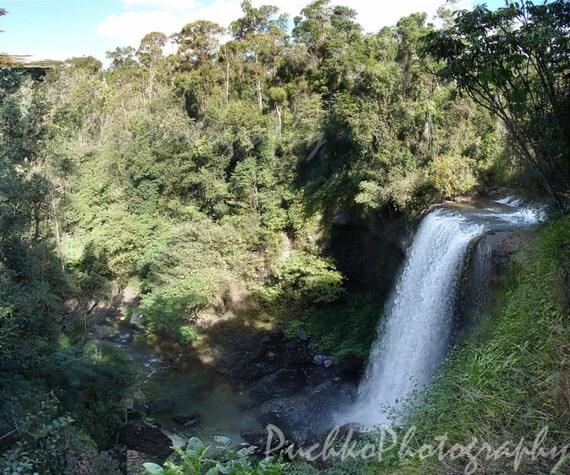 Waterfalls Near Cairns Australia's Cruise Port • Albom ... |Cairns Australia Waterfalls