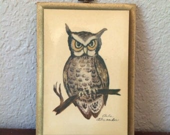 Wise Old Owl Wall Hanging