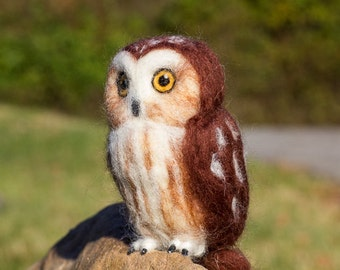 Saw whet Owl, needle felted sculpture, wool owl, saw whet owl pet, life size owl, realistic owl, soft owl, brown owl