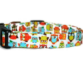 Colorful Owls Dog Collar