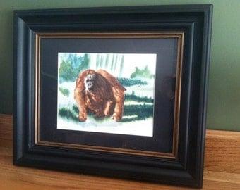 Original Orangutan Watercolor Painting 9x12