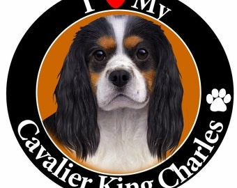 I Love My King Charles Cavalier Car Magnet With Realistic Looking King Charles Cavalier Photograph In The Center